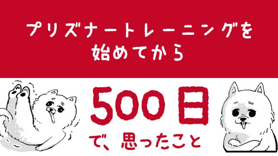 【自重筋トレ】プリズナートレーニングを500日続けてみた結果